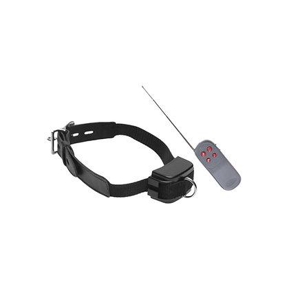 Master Series - Elektro-Halsband mit Fernbedienung