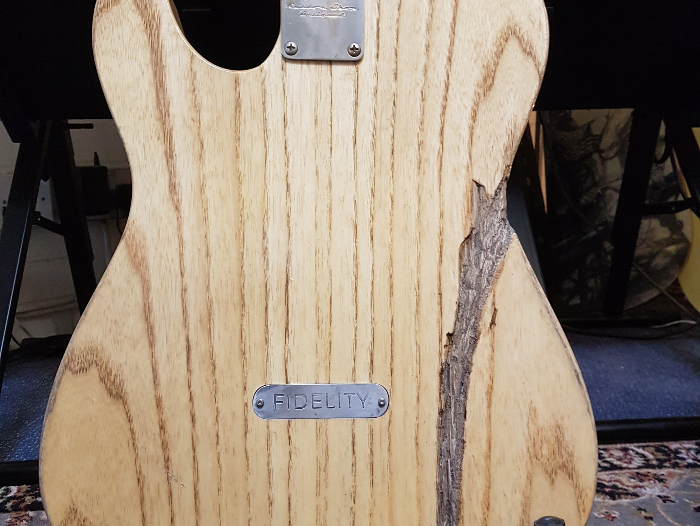 Fidelity Guitars -DA Telecaster Mod (10)