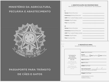 Passaporte para cães e gatos começa a ser emitido no país