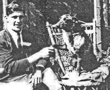 Conheça Bluey, o cão de maior longevidade que se tem registro