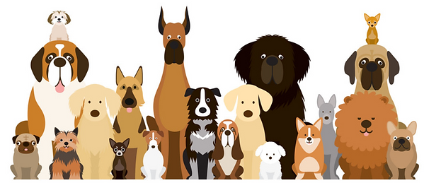 variety of dog breeds cartoon vector art