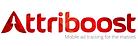 AppSampo attribution and analytics partner Attriboost logo