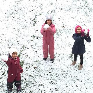 ISIB Snow Year 2