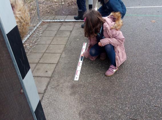 Year 3 Measuring Maths