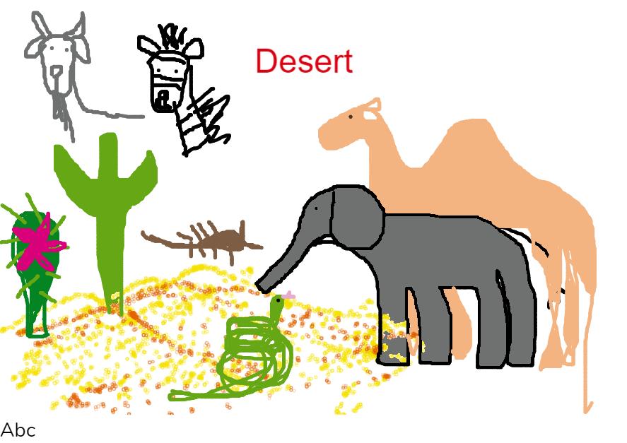 Desert - animals and plants