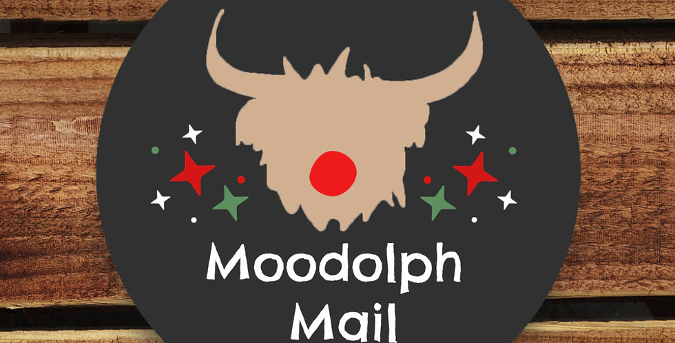 Recycled Christmas Stickers/ 35mm Christmas Moodolph Mail