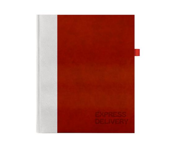 Undated Notebooks