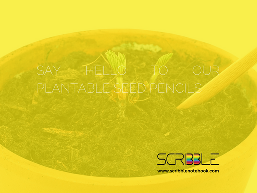 Say Hello to our Plantable Seed Pencils!