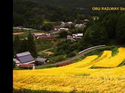 10000akabeko_autumn_3840_2160.jpg