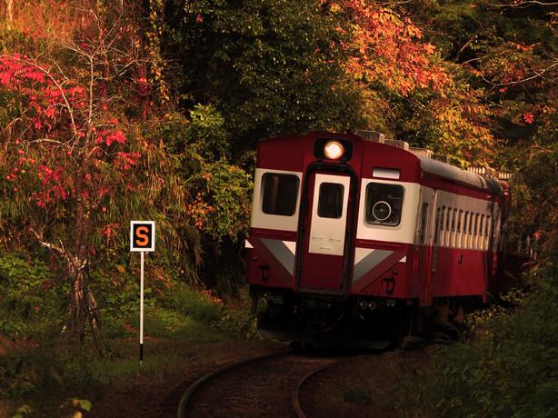 kiha100_autumnsmaph.jpg