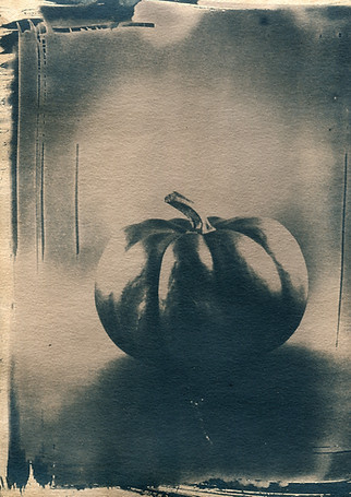Untitled Vegetable Photograph 1