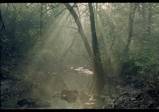 Jurassic Creek