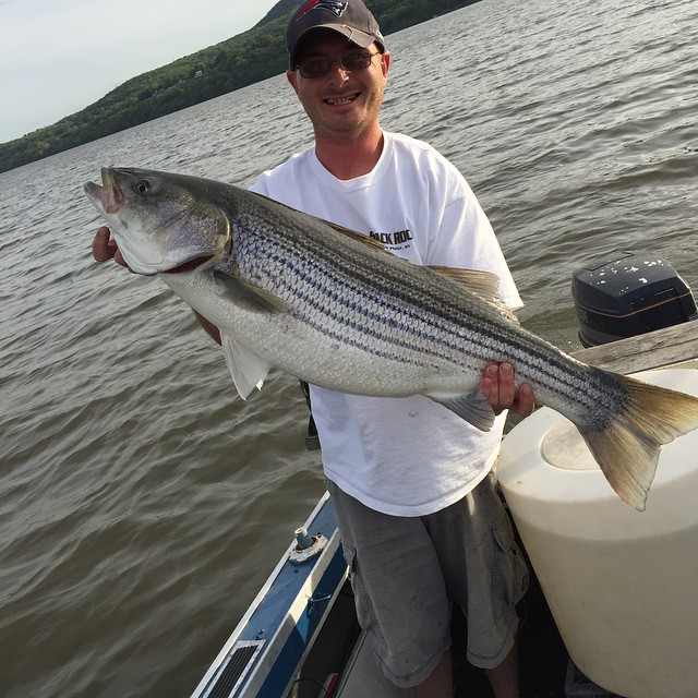 Big thanks today _riverguide1973 with bait and some technique tips! #stripedbass #hudson #letemgolet