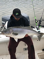 Trophy Striped Bass | Charter Fishing | Keepin' It Reel Sportfishing | Hudson River Valley, NY
