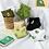 Thumbnail: Avocado Socks 🥑 5 Pair Pack