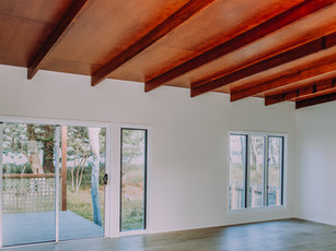 Raked timber ceiling