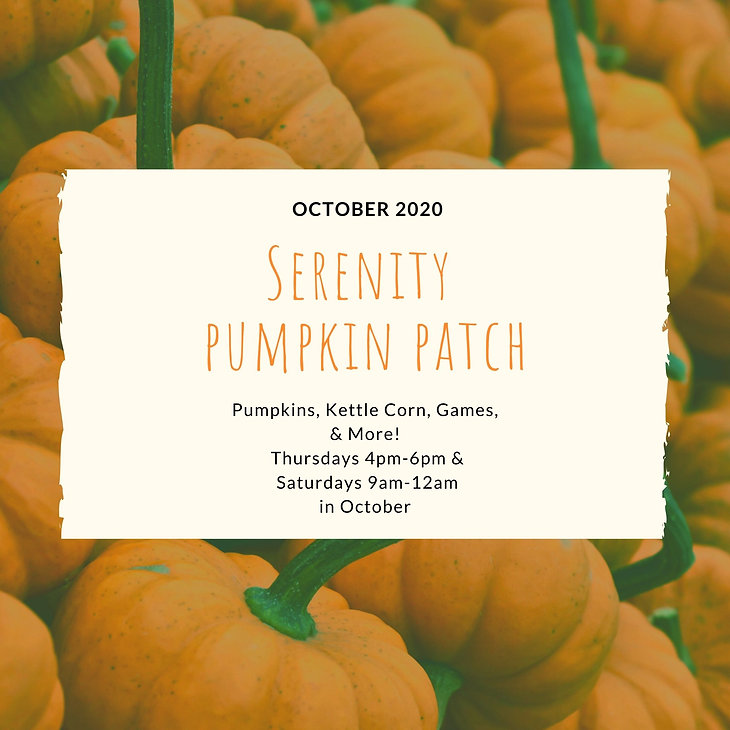 Serenity  pumpkin patch.jpg