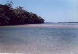 primeira praia485