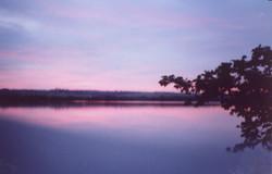 por do sol rosa10