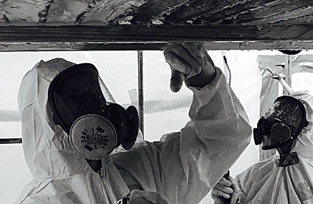 asbestos-abatement mod.jpg