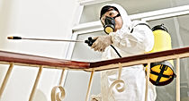 cleaning-service-worker-disinfecting-.jp