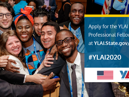 Young Leaders of the Americas (YLAI) Professional Fellows Program is now open!