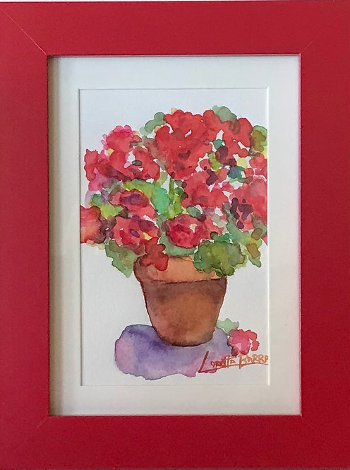 Geraniums in red frame