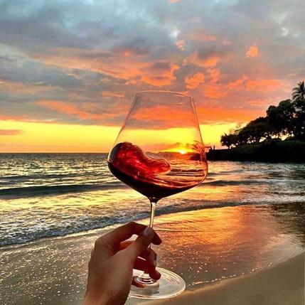 Notorious Wines - Scandalous One - More than Organic Wine...Orgasmic Wine!