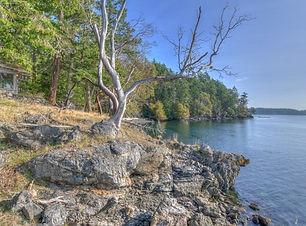 crane island.jpg