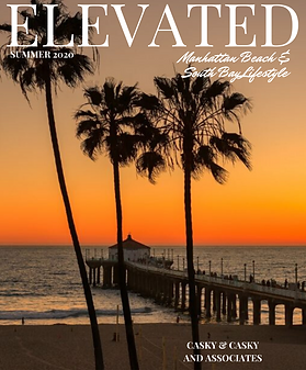 ELEVATED MANHATTAN BEACH COVER (2).png