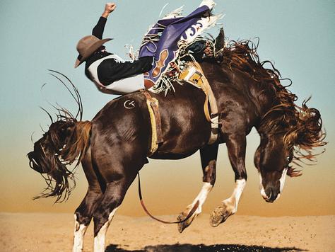 Steve Wrubel American Rodeo's New Master Photographer
