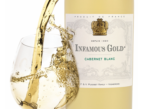 Notorious, Scandalous, Infamous or simply Meticulous Wines?