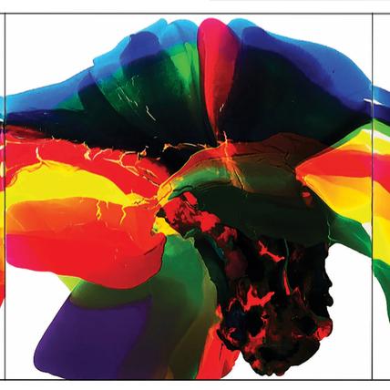 Roni Lynn Doppelt - The Art of Color