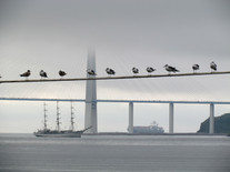 Look at Vladivostok 2021