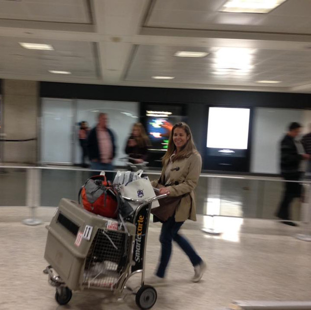 Sue Bell at Dulles airport travelling back from Kuwait with 3 dogs.