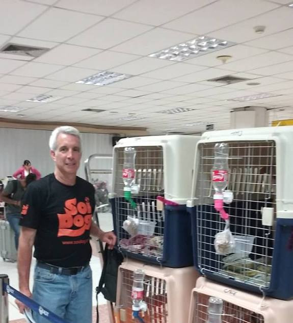 Howard bringing back 5 dogs to NYC. These animals were saved from the Dog Meat Trade by Soi Dog.