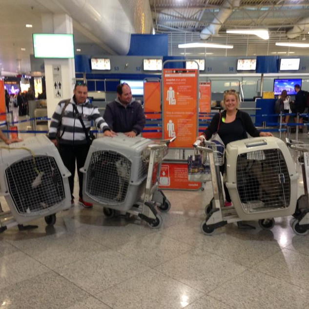 Dora at Athens airport.