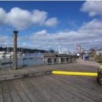 Swan Town Marina