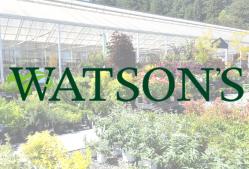 Watson's Greenhouse | Puyallup, WA