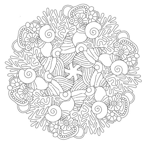 Wilddori Ocean Life Dreaming of Shells Mandala Colour In Page