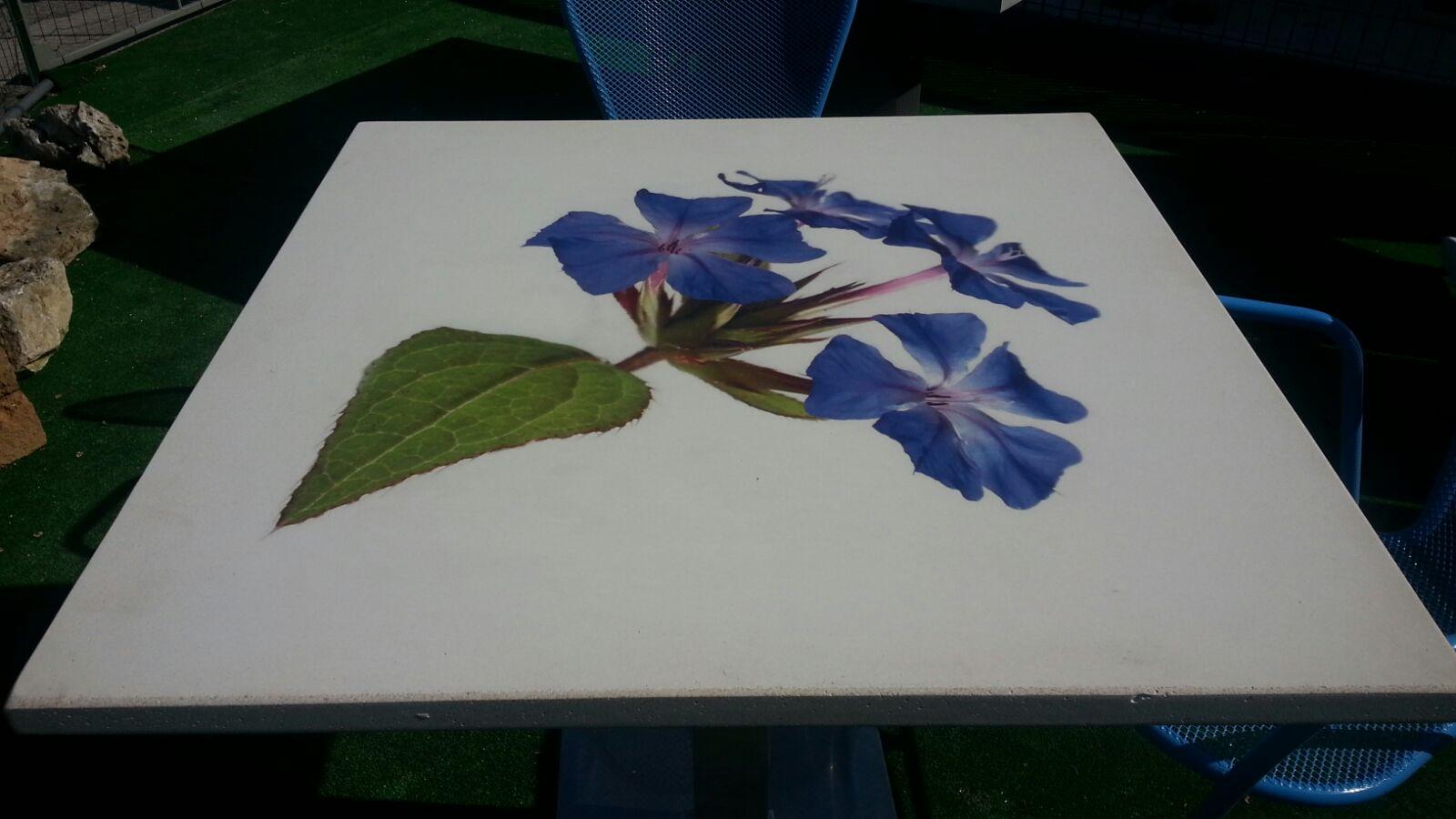 Tavolo in cemento bianco con fiore