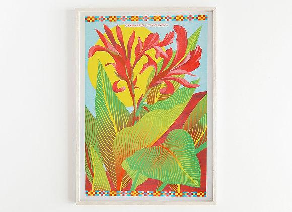 Canna Lily A3 Risograph Print