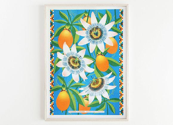 Passion Flower A3 Risograph Print