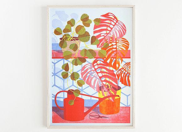 Hoya A3 Risograph Print