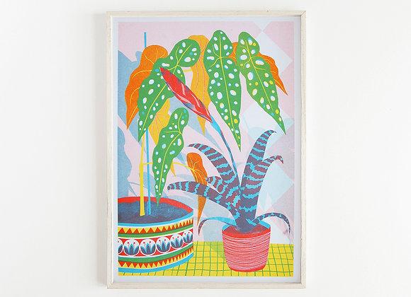 Bromeliad A3 Risograph Print