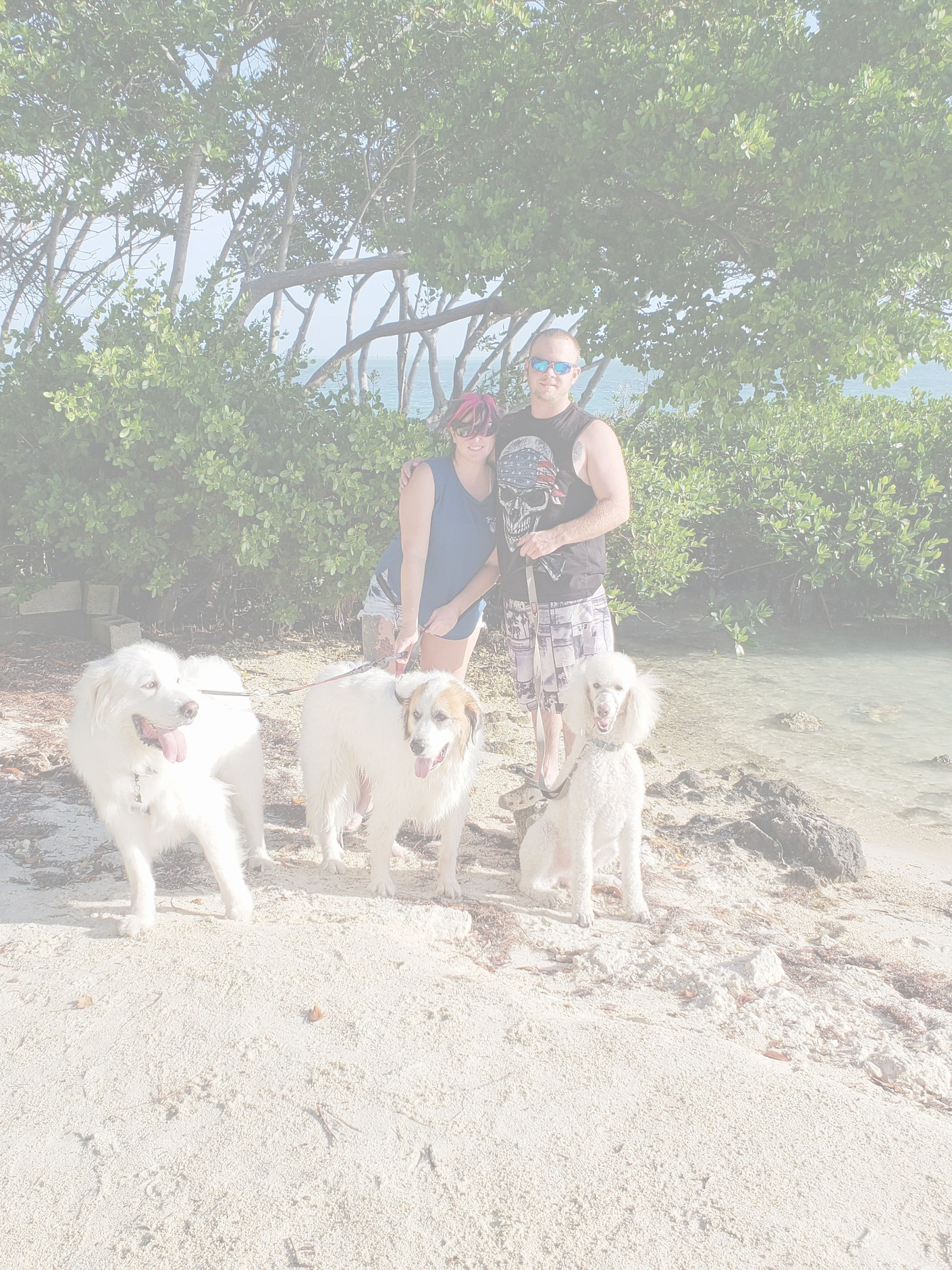 Garrett & Amanda with Moto, Fila & Emma in Florida