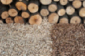 Biomasse foto.jpg