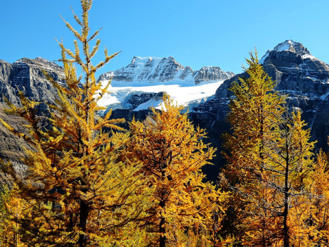 Larch+Valley+20.jpg