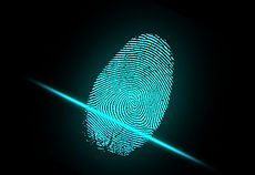 fingerprint_edited.jpg