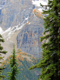 Larch Valley Hike 2